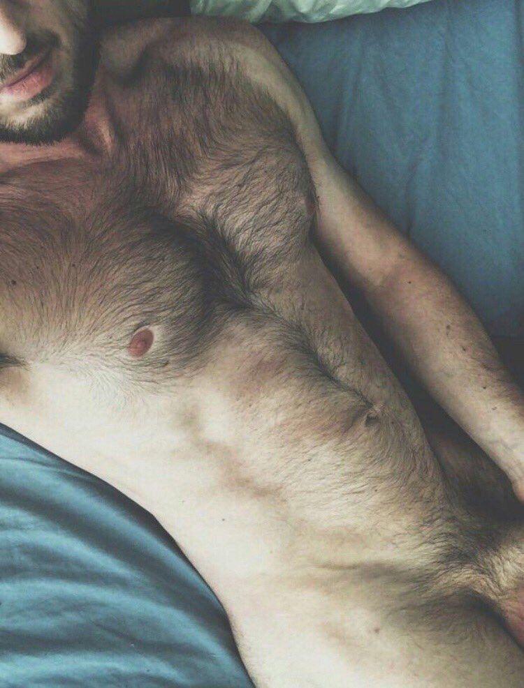 Фото кота мужик лохматая грудь влагалище красивое фото