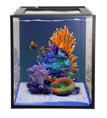 Innovative Marine 10 Gallon Nuvo Fusion Nano Aquarium Premium Starter Kit Nano Aquarium Aquarium Nano Tank
