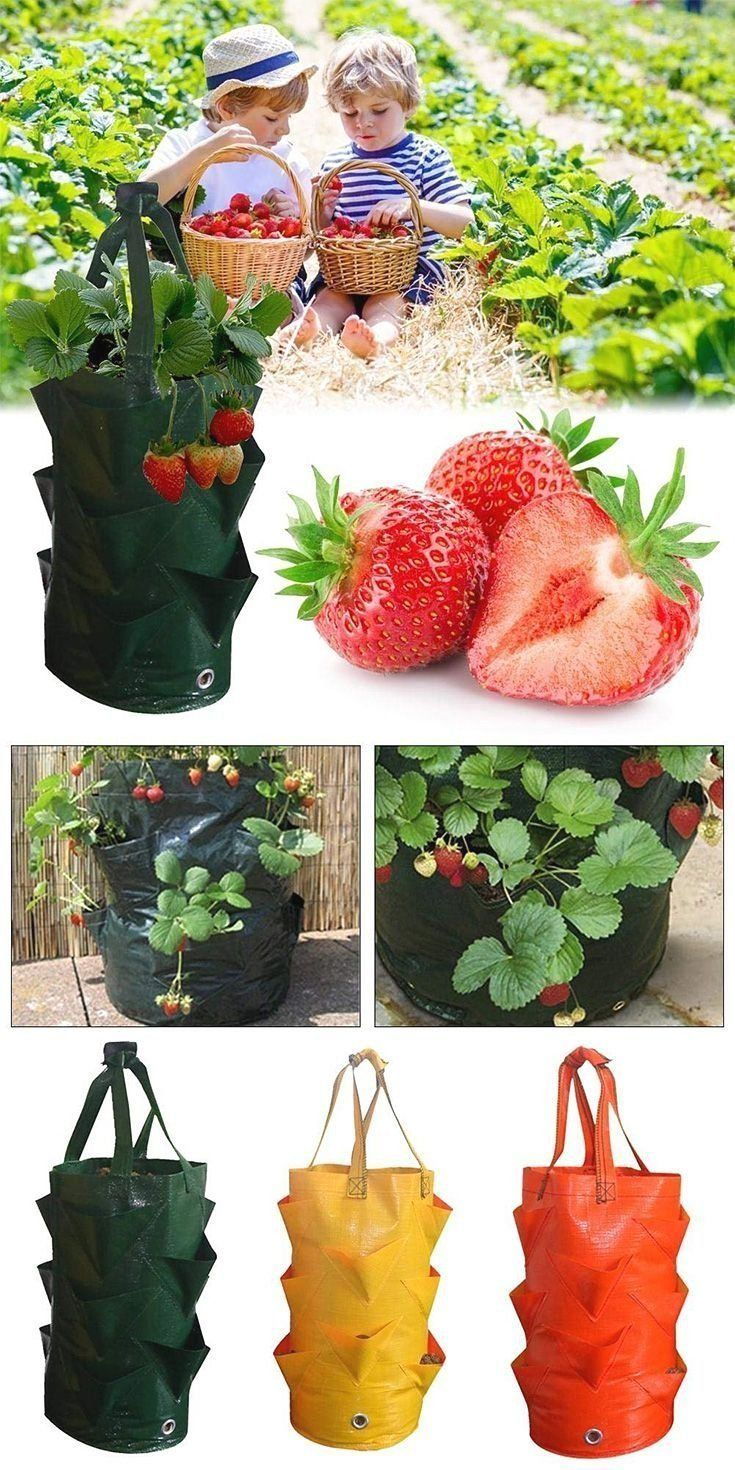 Multi Pockets Potato Strawberry Planter Balcony Strawberry