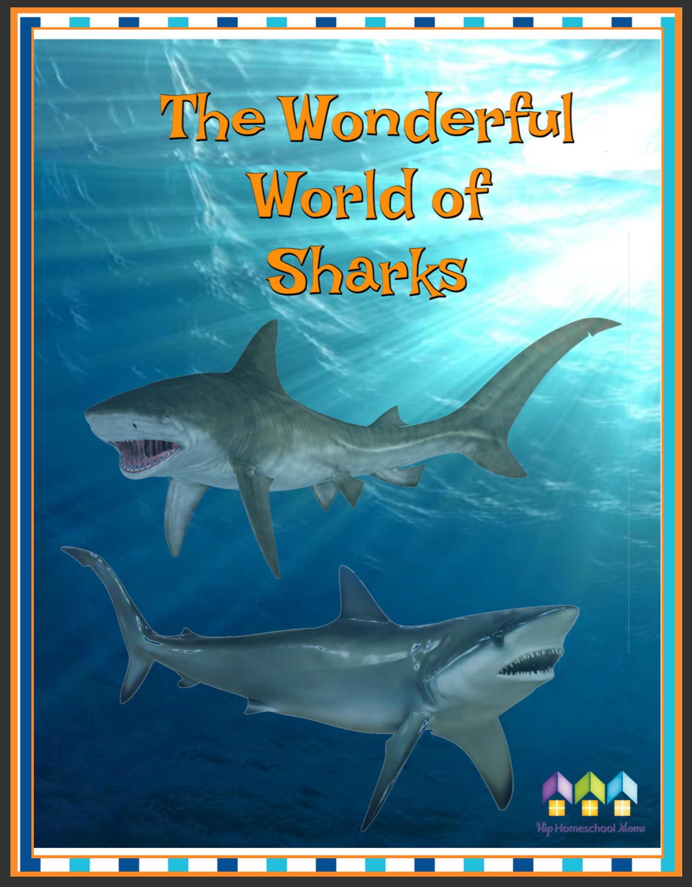 The Wonderful World Of Sharks Workbook