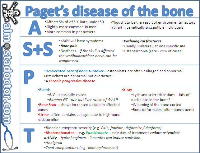 17++ Difference between osteoporosis and pagets disease ideas