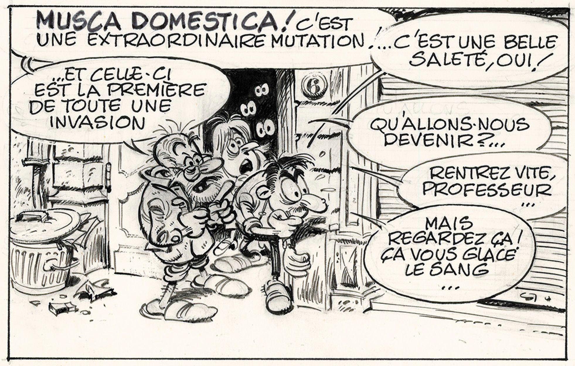franquin-le-vieux-professeur-avec-un-air-de-delporte-3hj3.jpg (1962×1248)