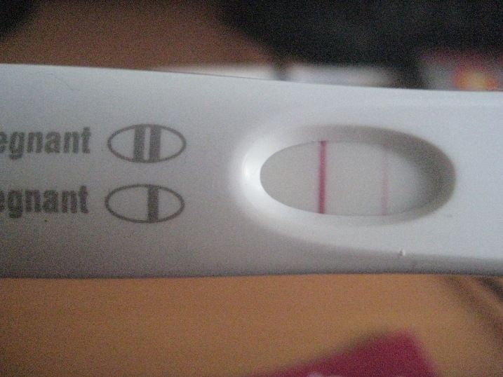 first response pregnancy test results positive