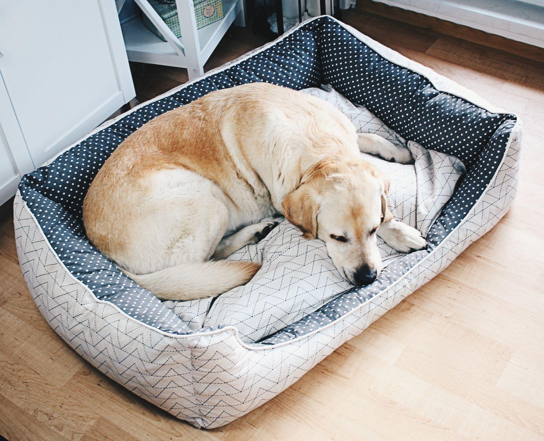 Hundebett+für+Jimmy | Hundesachen | Pinterest | Hundebett, Hunde und ...