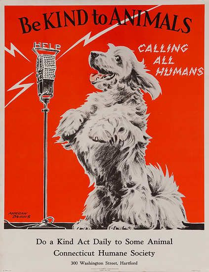 Be Kind To Animals Calling All Humans Original Connectict Humane Society Poster Animal Posters Kindness To Animals Animals