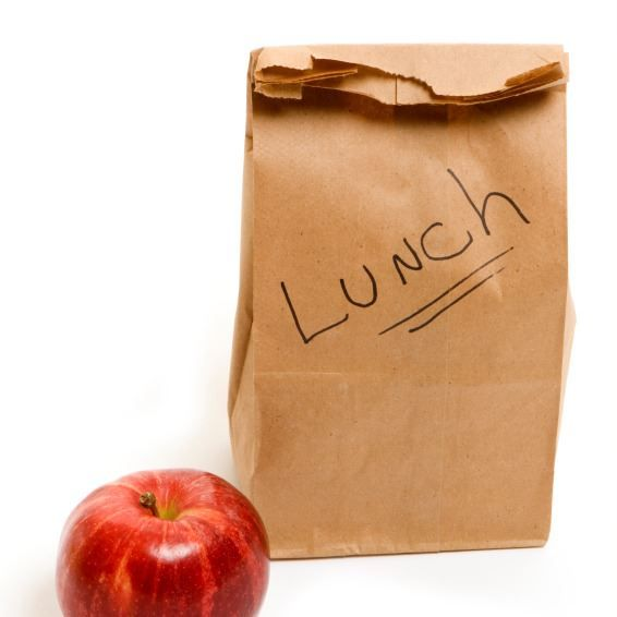 Disposable Lunch Facts Items Carried In Work And School Lunches Factyths