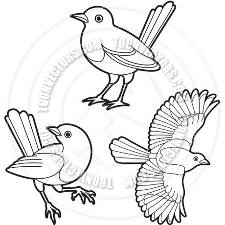 Magpie Birds Outline Vector Illustration by Lal Perera Toon