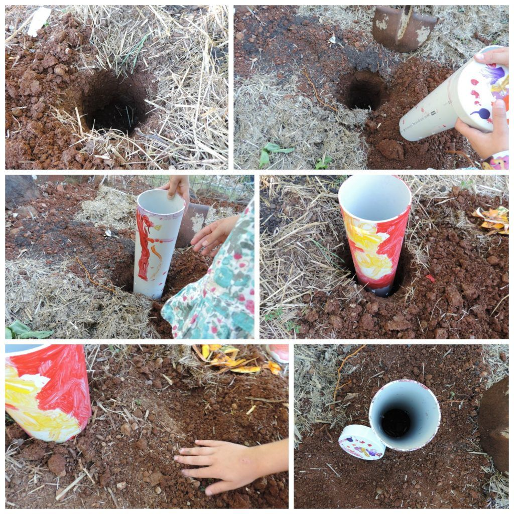 How To Make A Composting Worm Tower With Children