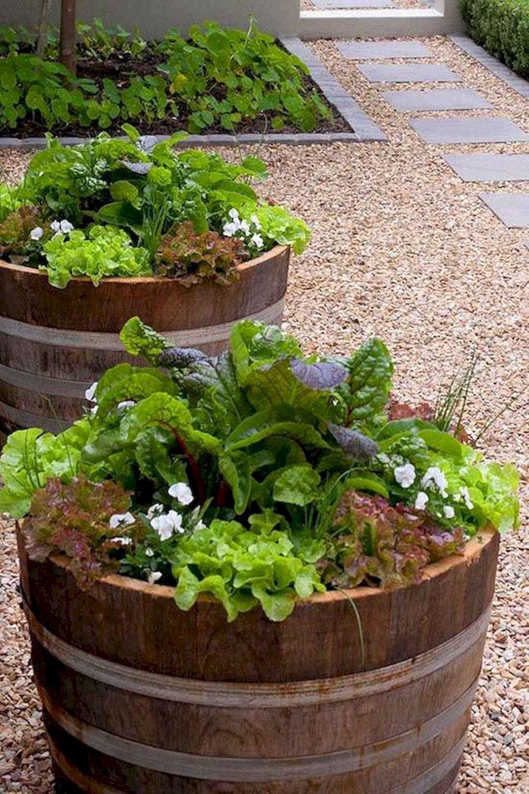 Krauterspirale Bauen Sie Unsere Schritt Fur Schritt Anleitung Spiral Garden Herb Garden Design Herb Spiral
