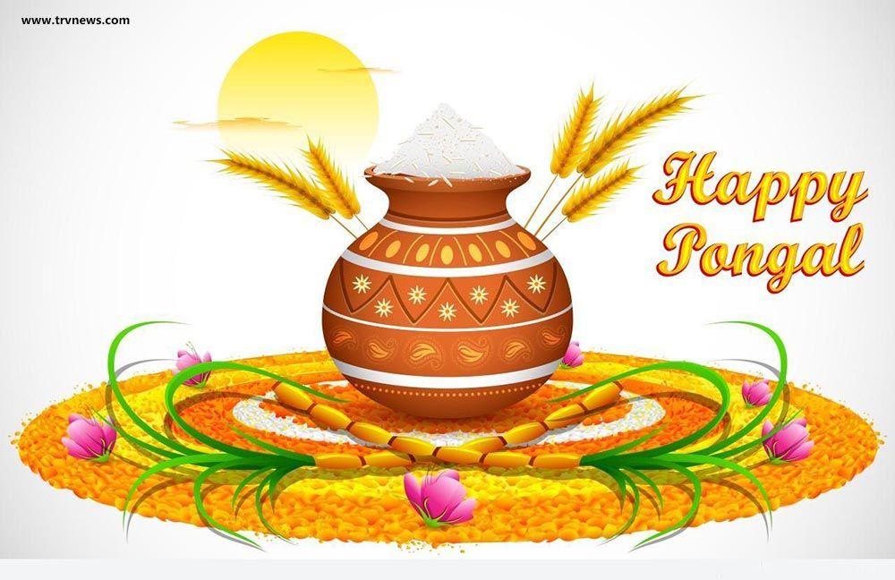 happy makar sankranti image Happy pongal, Happy makar