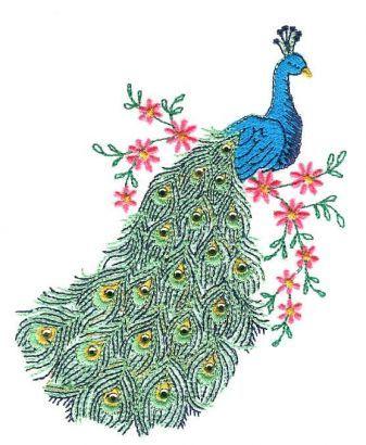 Peacock Stencil Designs Peacock Embroidery Designs