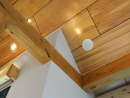 Speakers+are+installed+in+the+ceiling+to+amplify+the+home's+sound+system.
