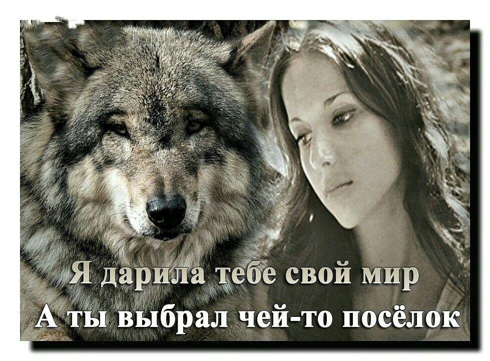 нас картинки волков с статусами смыслом мужские нужную