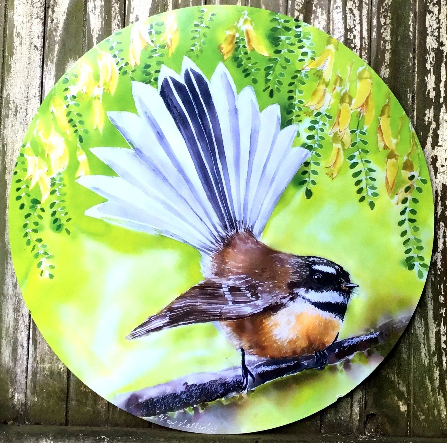 Fantail new zealand bird circle art panel kay designs