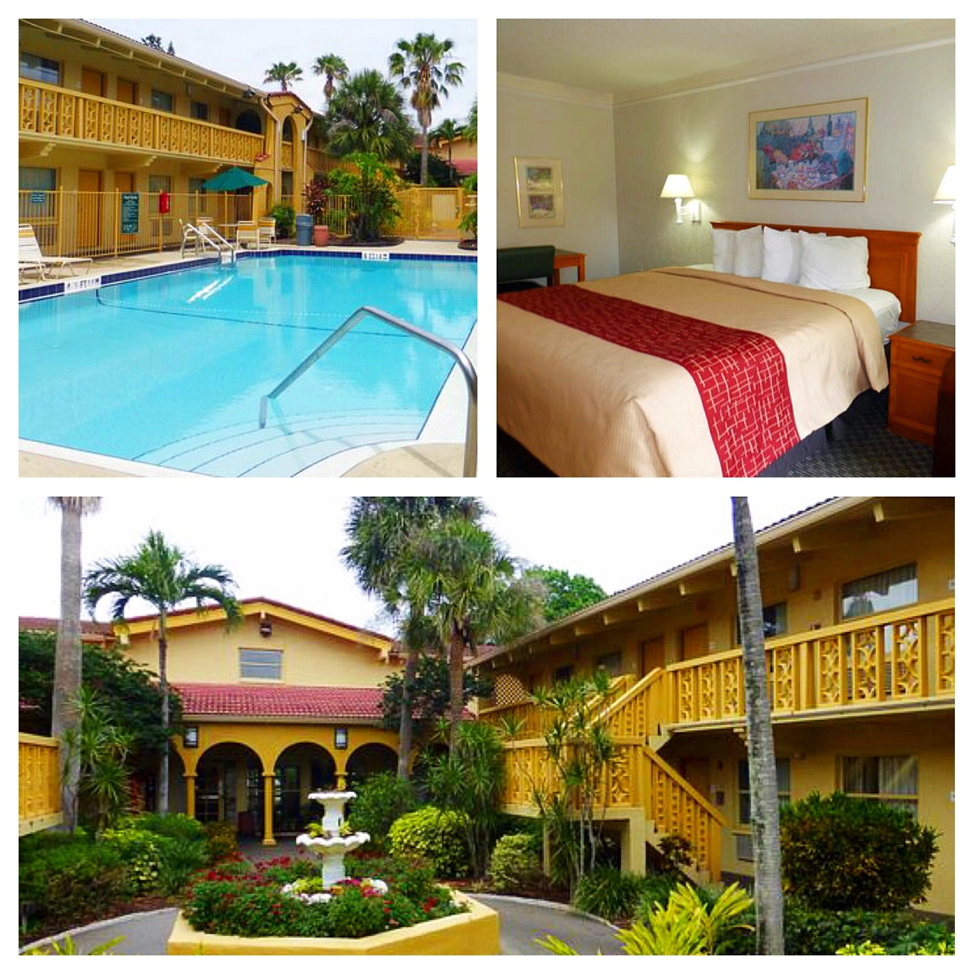 Budget, Pet Friendly Hotel in Saint Petersburg, FL 33714