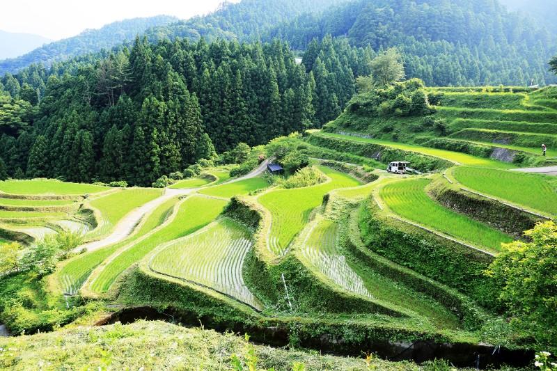 四国で観光 おしゃれまとめの人気アイデア Pinterest フミシラ 棚田 文化的景観 ランドスケープデザイン