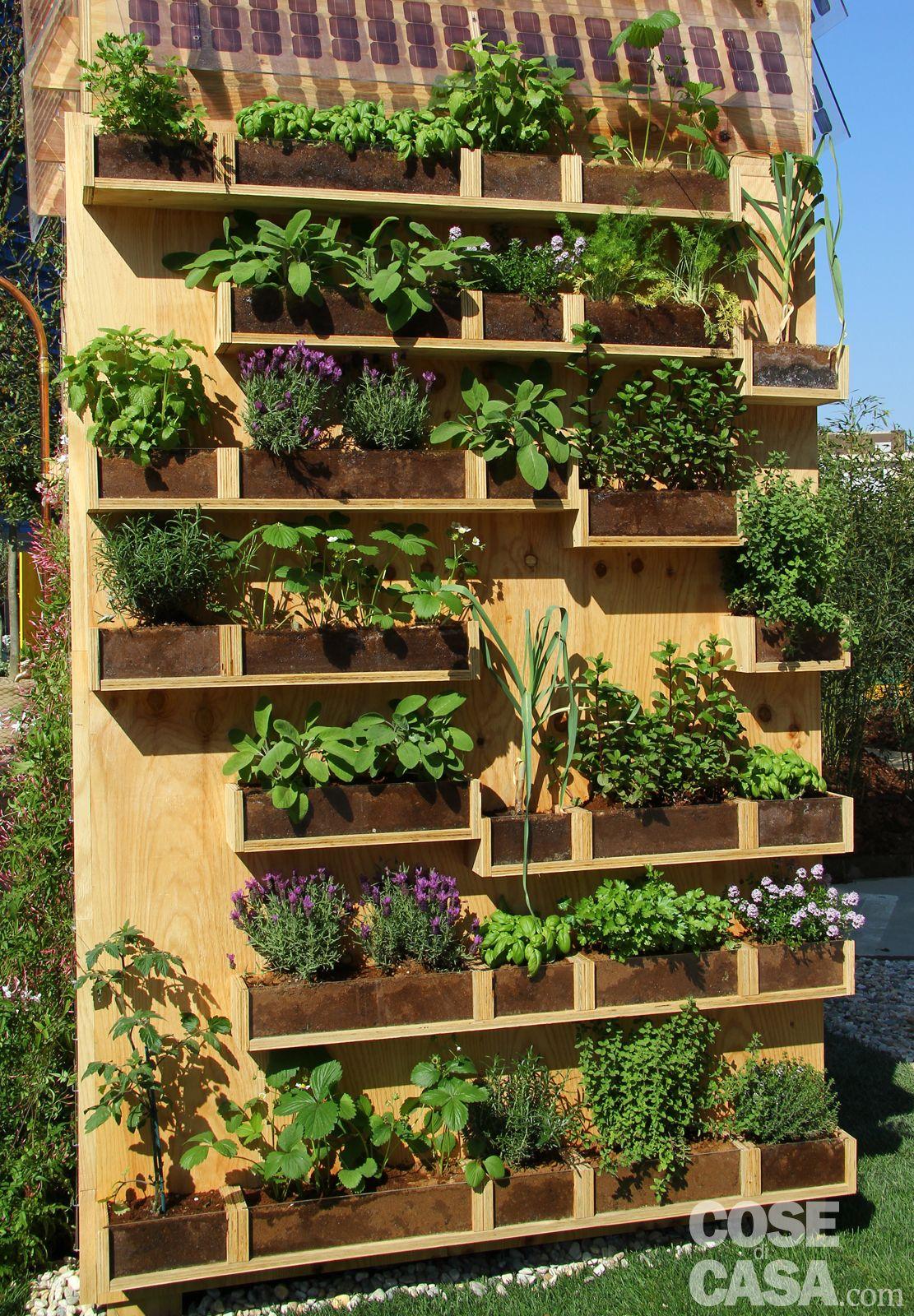 Una parete di aromatiche in balcone | gardening | Pinterest ...