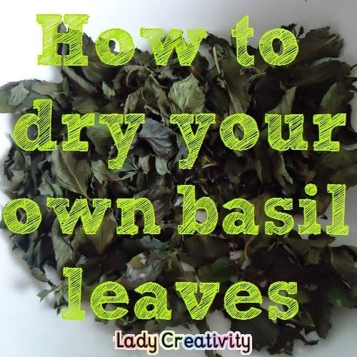 How to oven dry your own basil leaves We have grown a lot of basil in my side vegie patch and recently I needed to use dried basil in a recipe.  http://www.ladycreativity.com/2014/10/how-to-oven-dry-your-own-basil-leaves.html