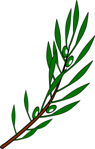 File Olive Branch Png Image With Transparent Background Png Free Png Images Olive Branch Family Tree Art Gold Olive Branch