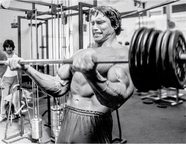 Arnold Schwarzeneggeru0027s Blueprint To Cut: Training   Bodybuilding.com