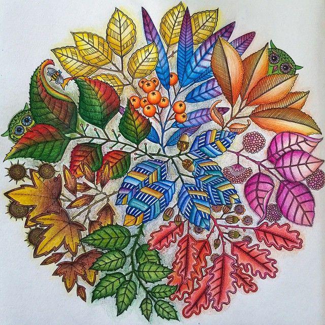 Jardin Secreto Inspiracion Secret Garden Book Inspiration