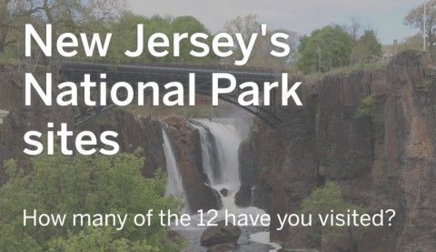 The National Park Service is celebrating its 100th birthday this week with free admission to many of its parks and sites around the nation.