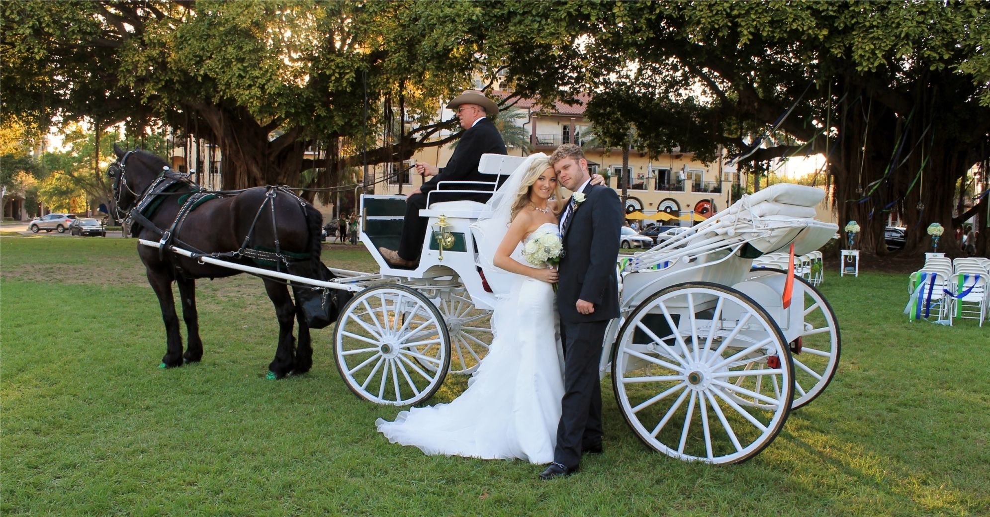 Cinderella Wedding Horse Drawn Carriage My Will Definitely Have This Creme De La Pinterest And