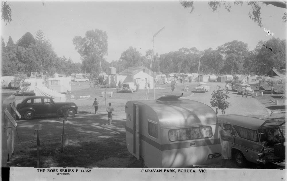 Echuca Caravan Park next to Victoria Park Oval | Rose