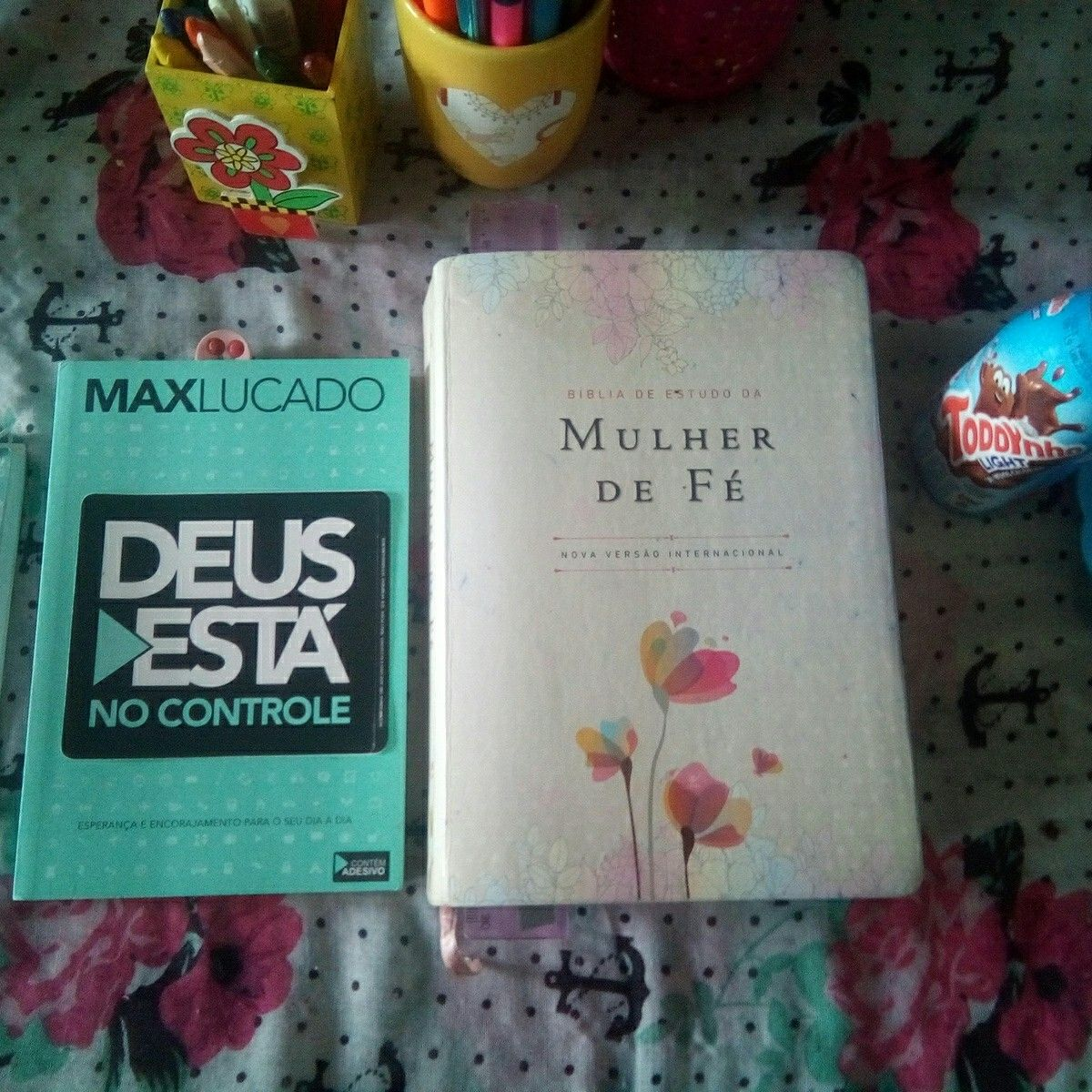 Max Lucado Biblia De Estudo Da Mulher De Fe Livros