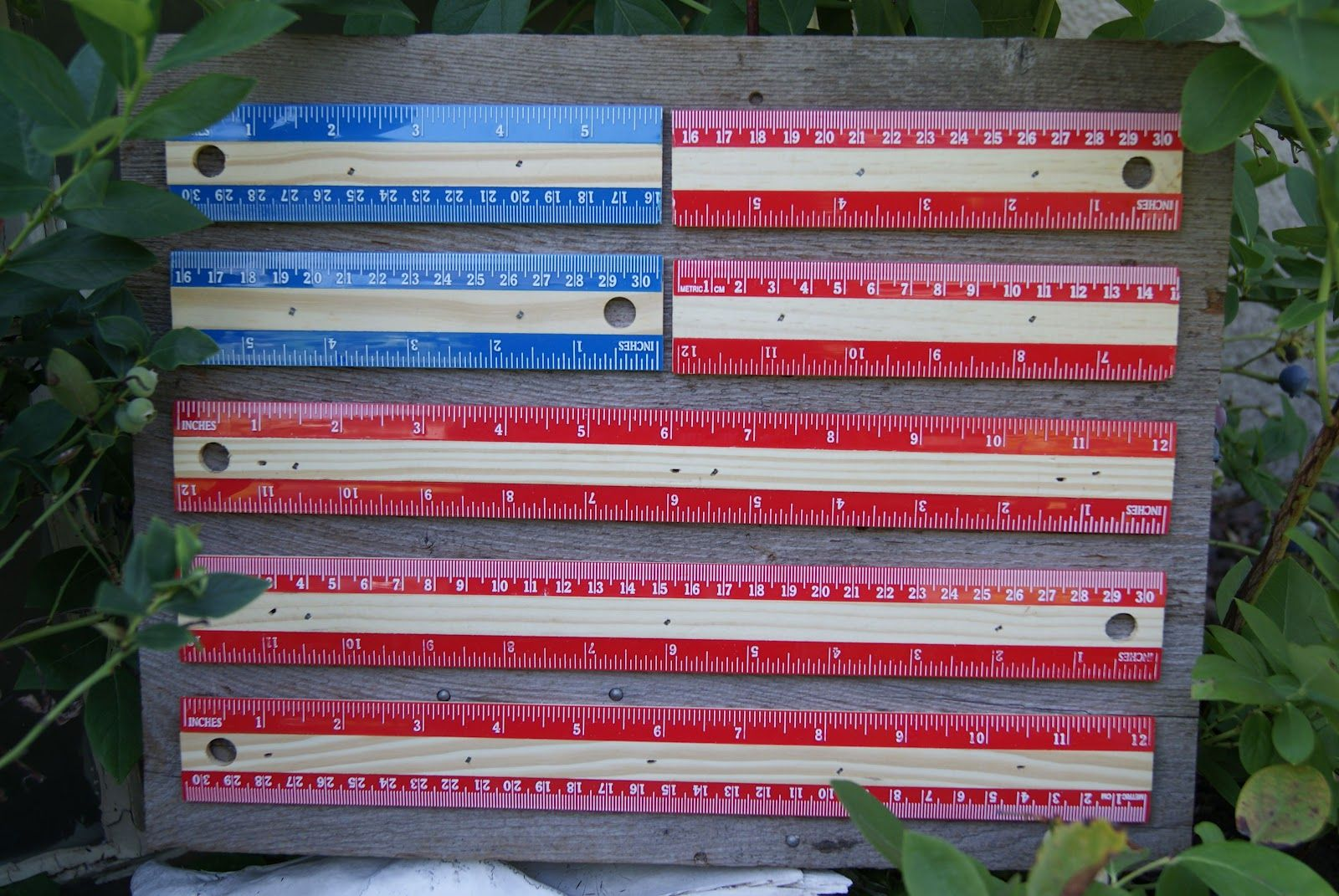 bles-id: America Rules Ruler Flag