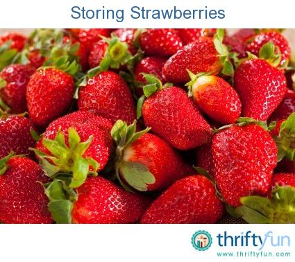 how to save strawberries from spoiling