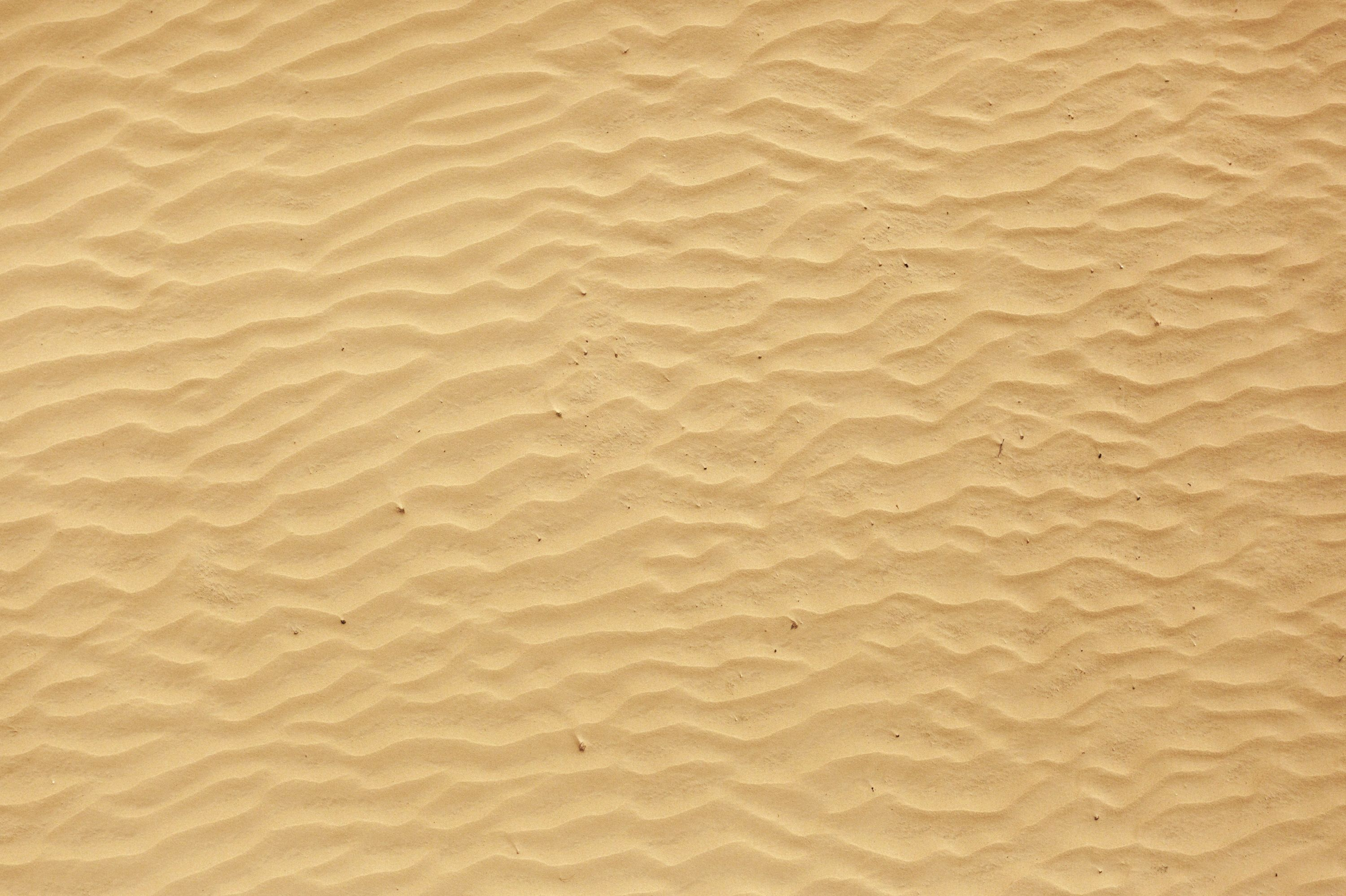 Background Beach Sand