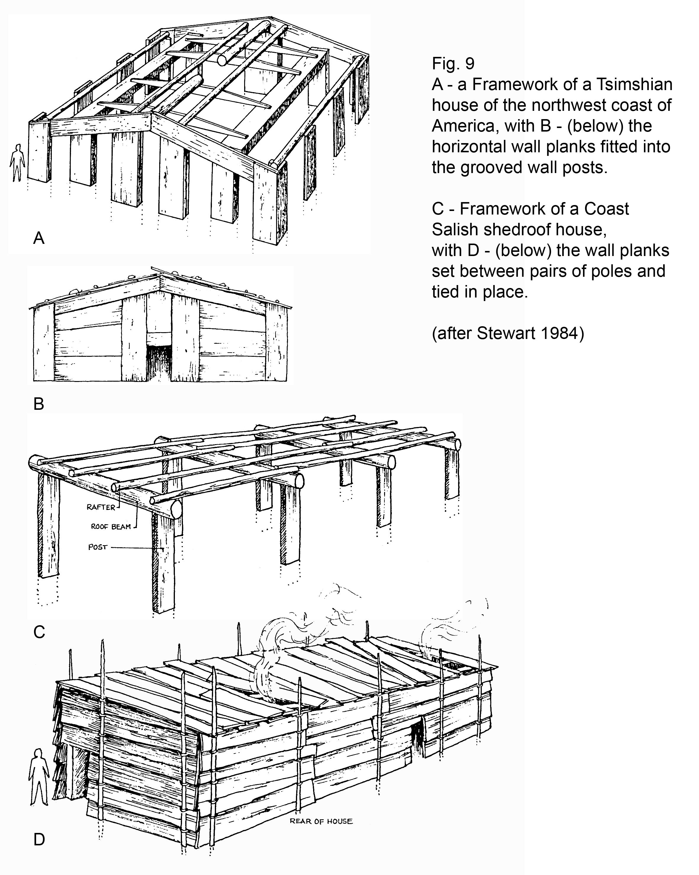 Fig 9 A Framework Of A Tsimshian House And A Coast Salish
