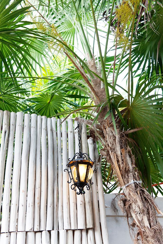 Tropical Victorian. So much better than steampunk.