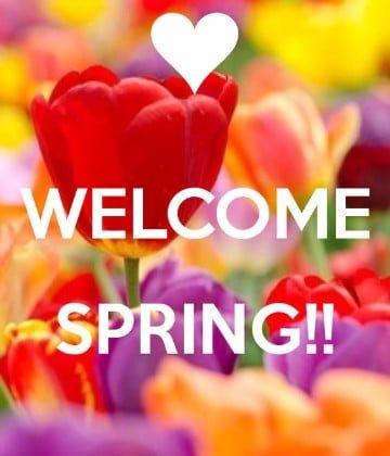 Tarjetas De Primavera Gratis Para Enviar Bienvenida La