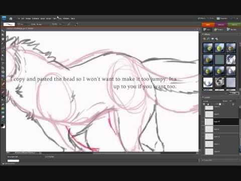Wolf Run Tutorial How I Animate Photoshop Users Recommended Photoshop Tutorial Animation Storyboard