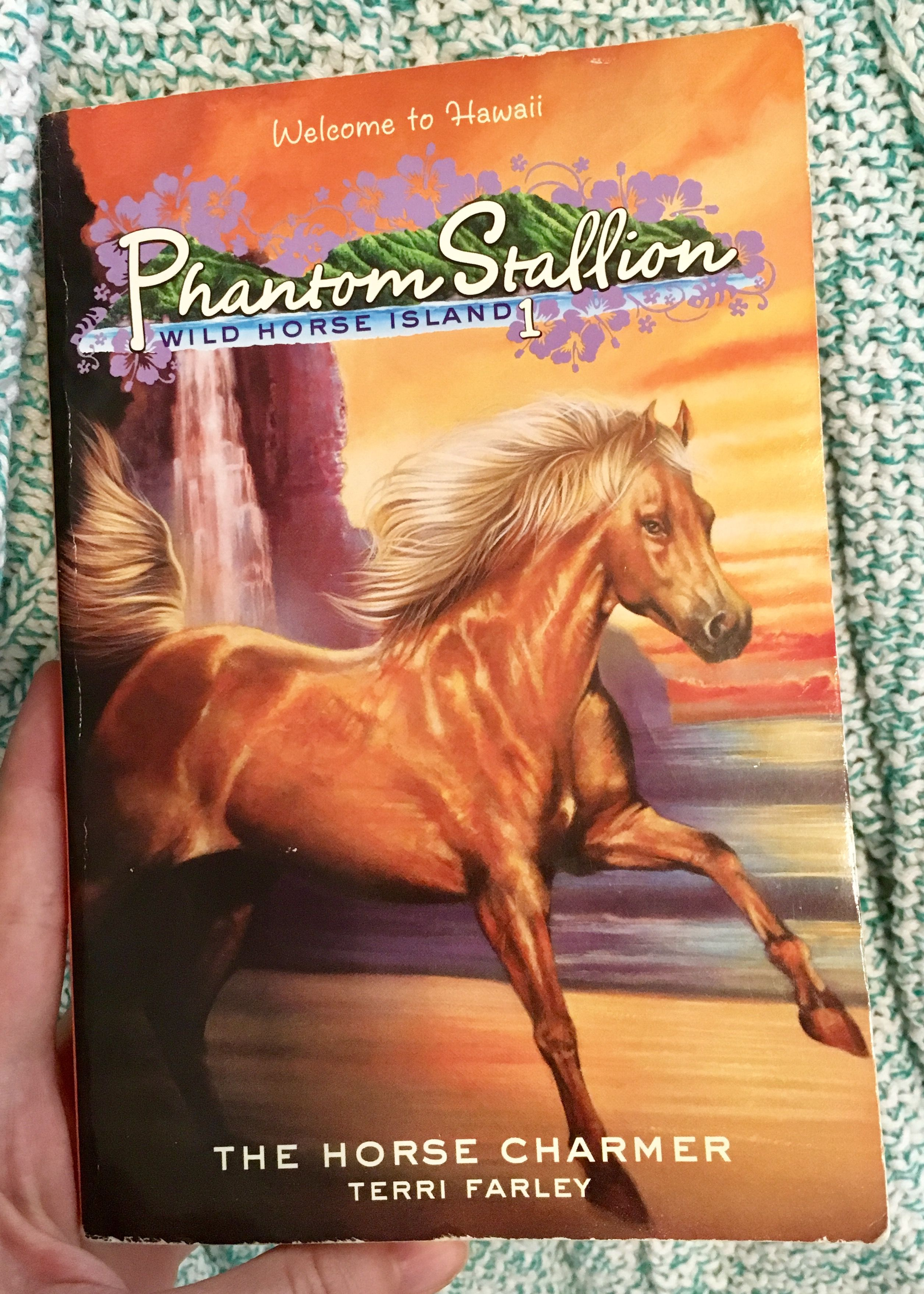 The Horse Charmer Book 1 In The Phantom Stallion Wild