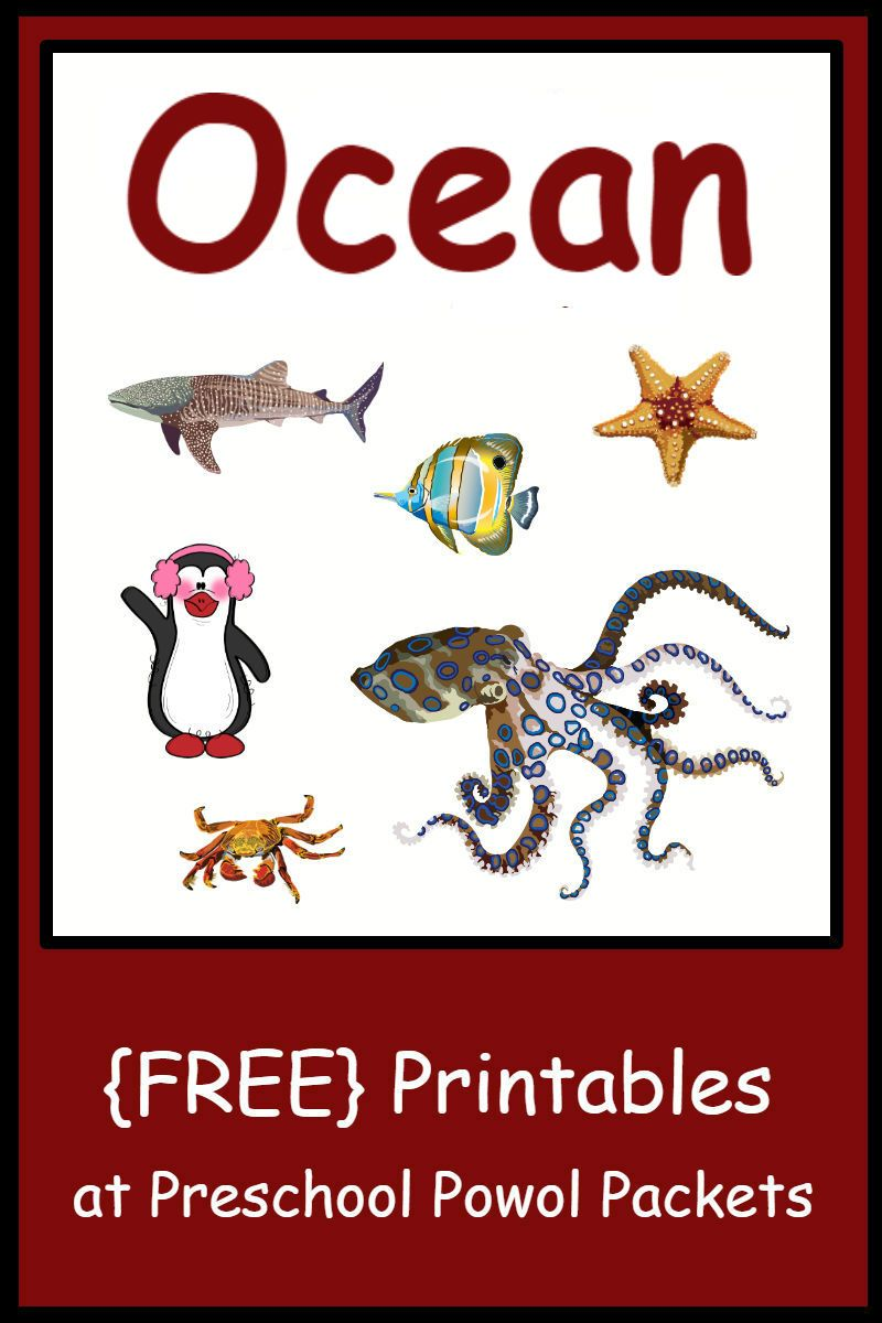 Free Preschool Ocean Themed Printable Activities Free Preschool Printables Kindergarten Math Worksheets Preschool Worksheets [ 1200 x 800 Pixel ]