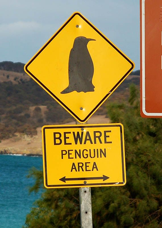 Image by Janet Bunge on Signs - Now That's Funny! | Funny ...