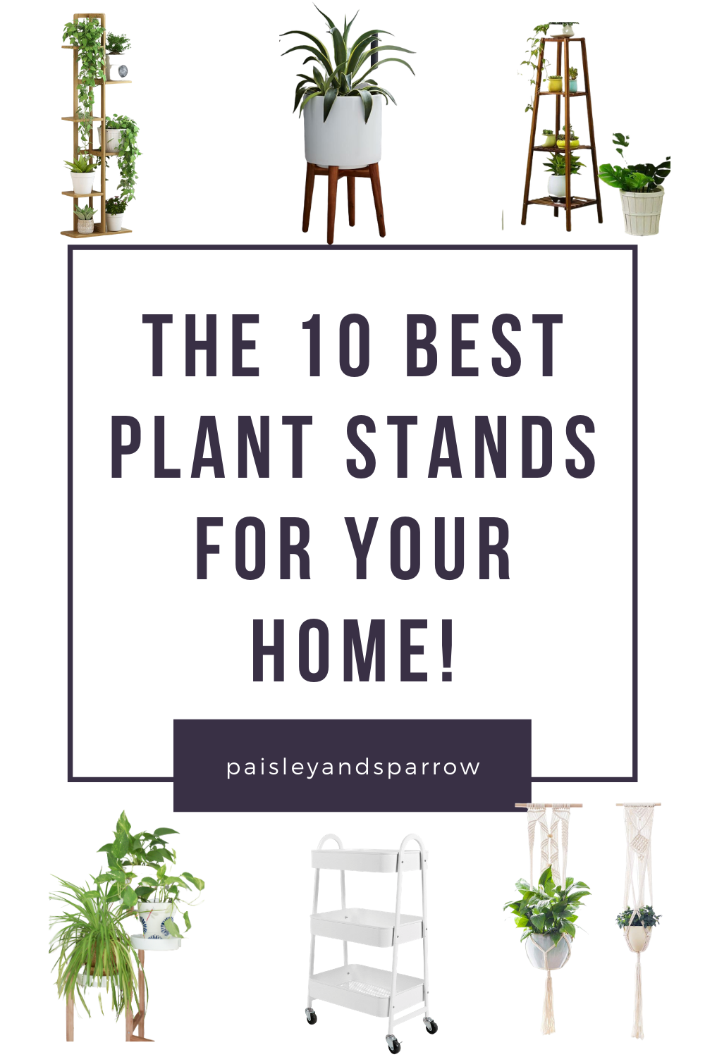 10 Amazing Indoor Plant Stand Ideas for Every Type of Home ... on Amazing Plant Stand Ideas  id=23859