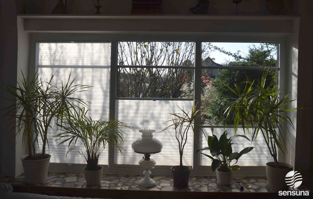 sensuna® Plissee Faltstores am Wohnzimmerfenster /sensuna® pleated ...