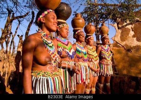 Zulu Tribes Women Dancing In Traditional Clothing Shakaland Zululand KwaZulu Natal South Africa