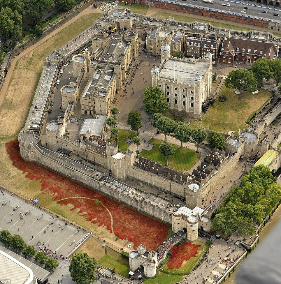 Spectacular Display Of Thousands Of Ceramic Poppies At Tower Of - Tower of london river of poppies