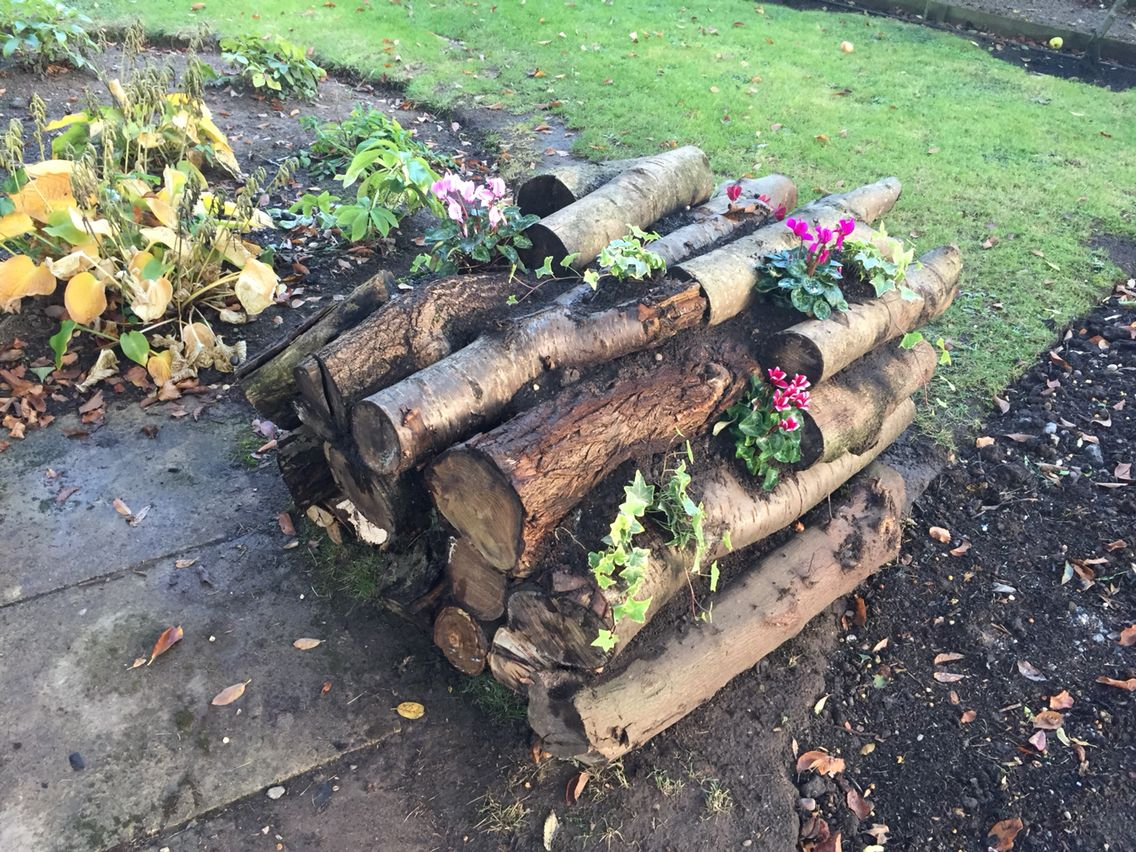 New use for old logs in my garden