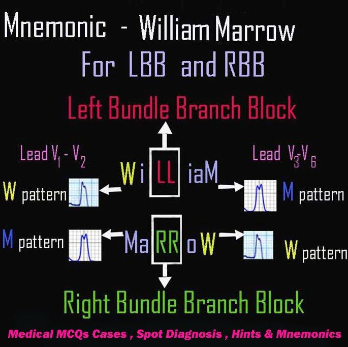 Mnemonic Lbb Rbb Nursing Information Nursing Notes Mnemonics