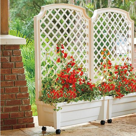 Self watering patio planter with trellis for Privacy wall planter
