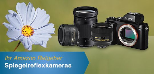 Amazon.de: Ratgeber Spiegelreflexkameras: Elektronik & Foto