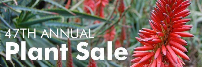47th Annual Spring Plant Sale: Sat 4/26