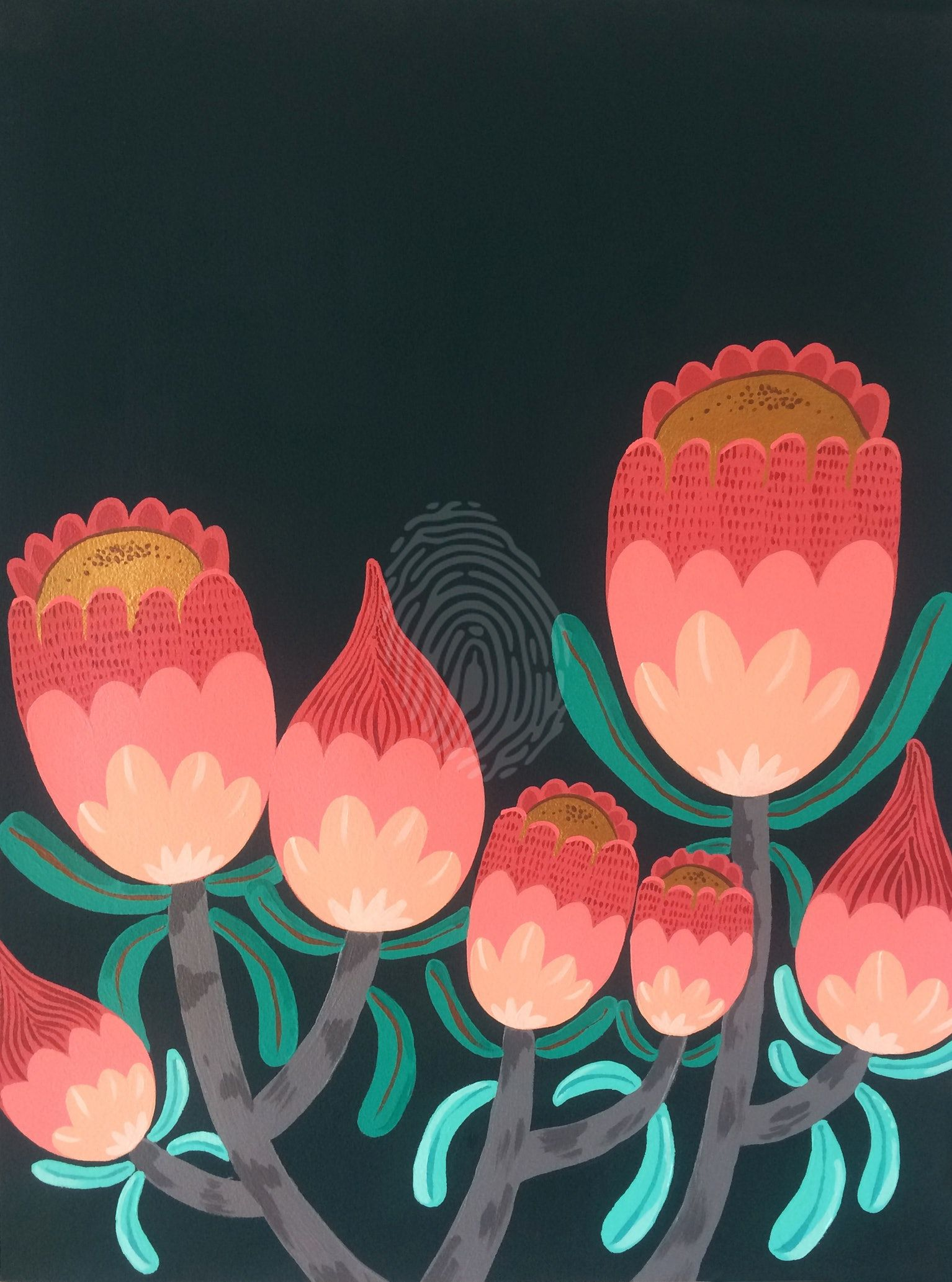 Sea Of Proteas Line Artwork Artwork Buy Art Online