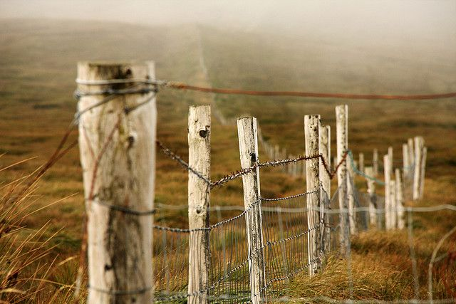 Old Wooden Fence Fence Old Fences Rustic Fence
